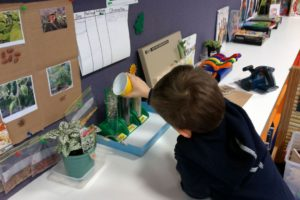 Science experiences at Kinder